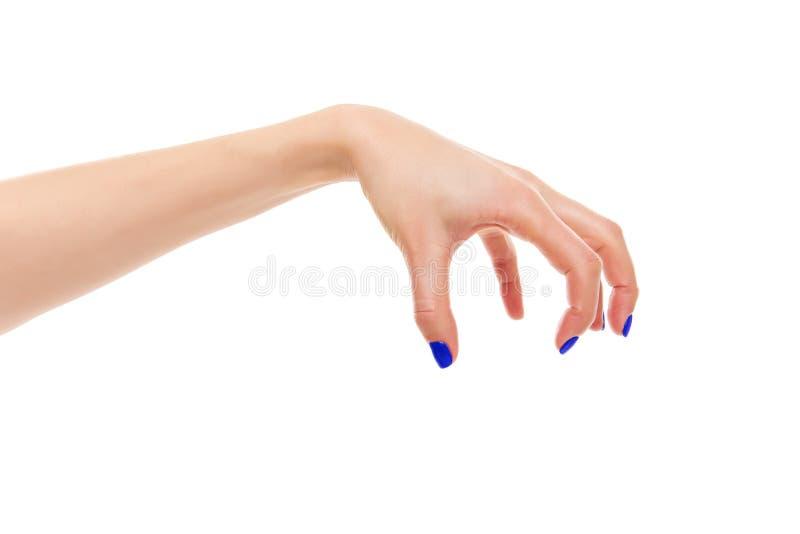 Female hand evil. Isolated on white background stock photography