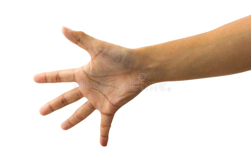 Female hand gesture showing hi five or stop sign. royalty free stock photos