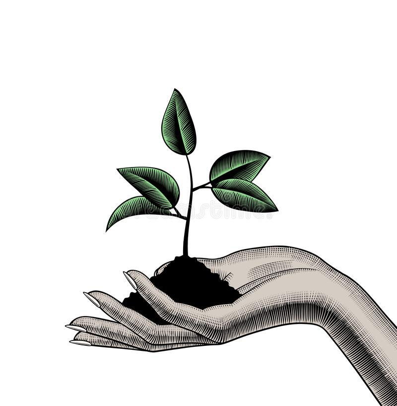 Free Female Hand Holding A Handful Of Soil With A Growing Young Shoot Or Sprout Royalty Free Stock Photography - 220607557