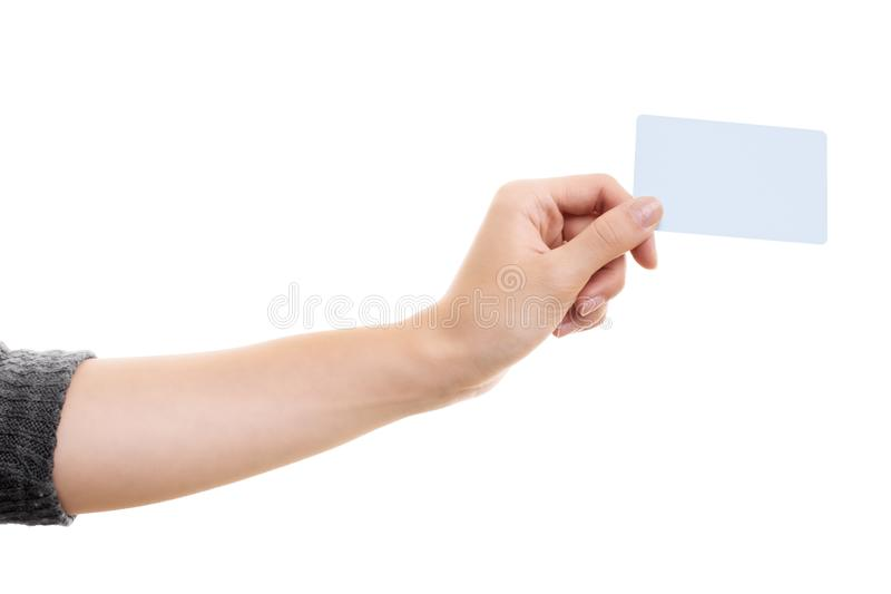 Female hand holding a blank white card royalty free stock images