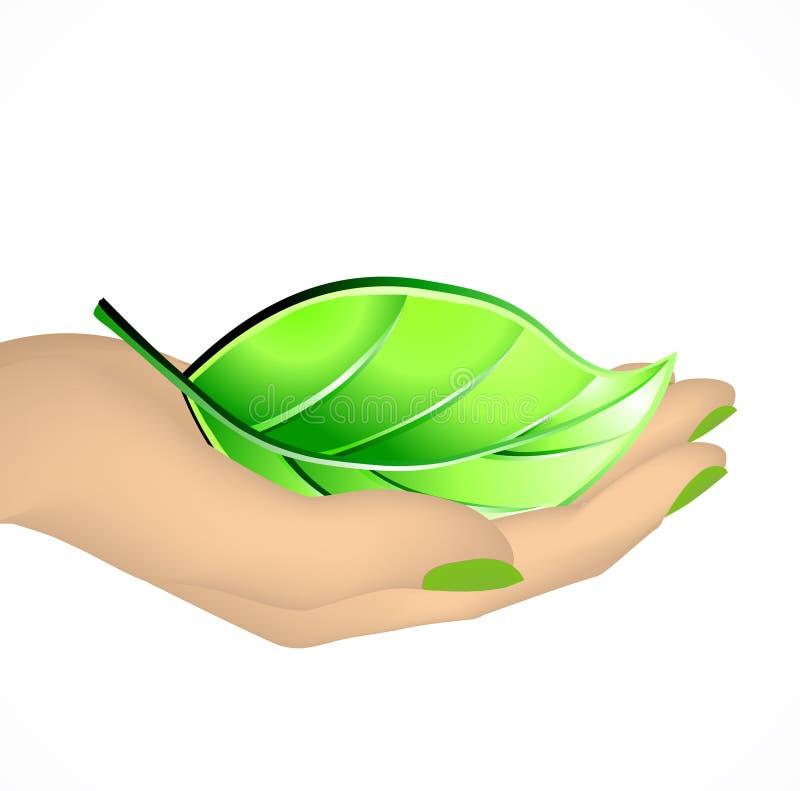 Female hand holding green leaf. Vector stock illustration