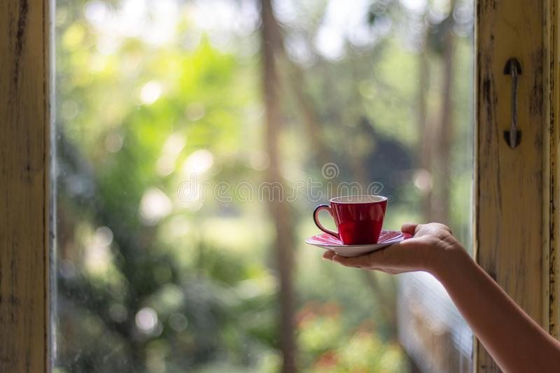 Female hand holding a red cup of coffee or tea in morning with b royalty free stock images