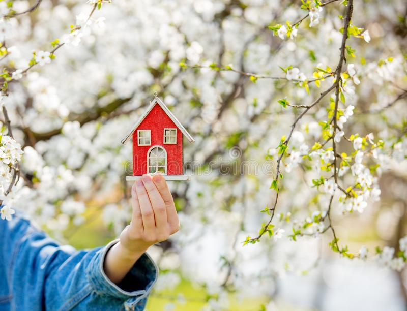 Female hand holding red little house near flowering tree. royalty free stock photos