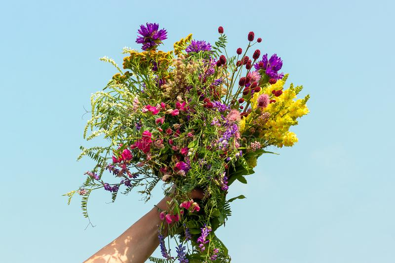 Female hand holds bright colorful bouquet of wild flowers against blue sky. Womens day, Mothers Day, Hello summer or Hello spring stock images