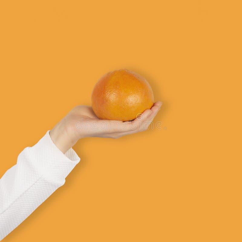 Female hand holds bright orange grapefruit fruit isolated on orange background stock images