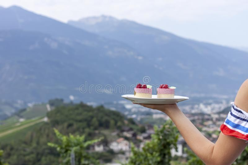 Female hand keeping plate with cakes over vineyard stock images