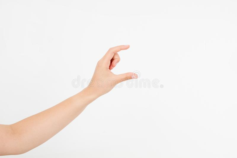Female hand measuring invisible items, woman`s palm making gesture while showing small amount of something on white isolated back. Ground, side view, close-up royalty free stock photography