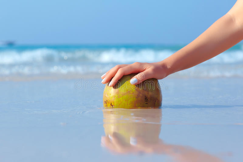 Female hand propped on coconut on sea background. Female hand propped on coconut on blue sea background royalty free stock image