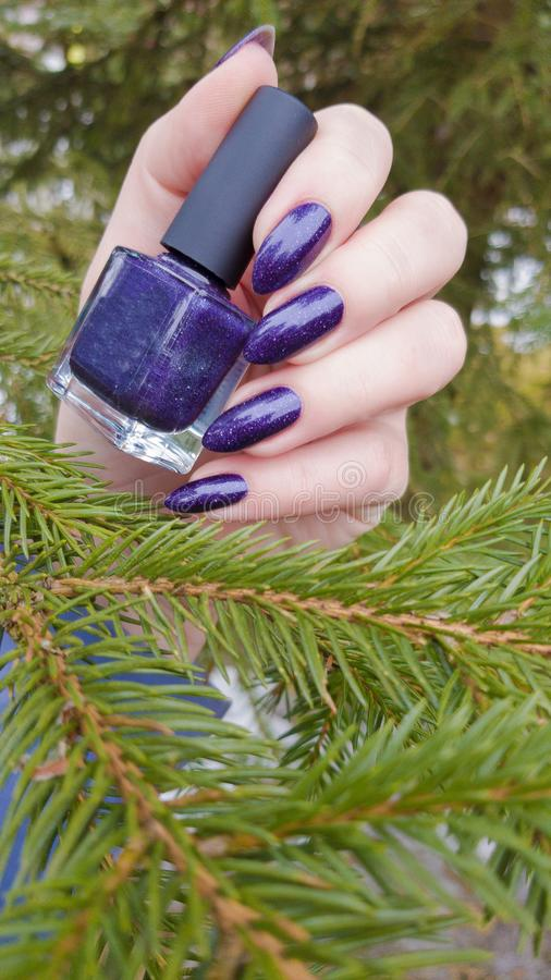 Female hand with purple long nails and nail polish bottle. Female hand with purple long nails manicure and nail polish bottle stock photos