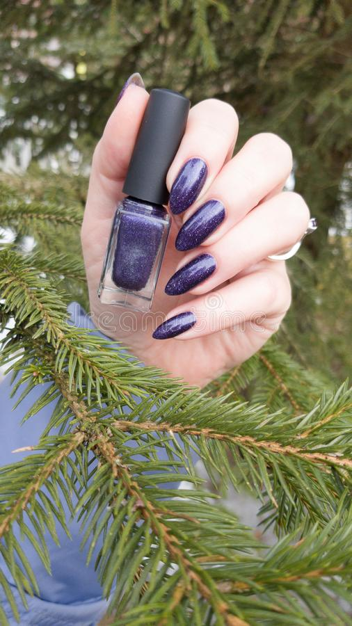 Female hand with purple long nails and nail polish bottle. Female hand with purple long nails manicure and nail polish bottle stock images