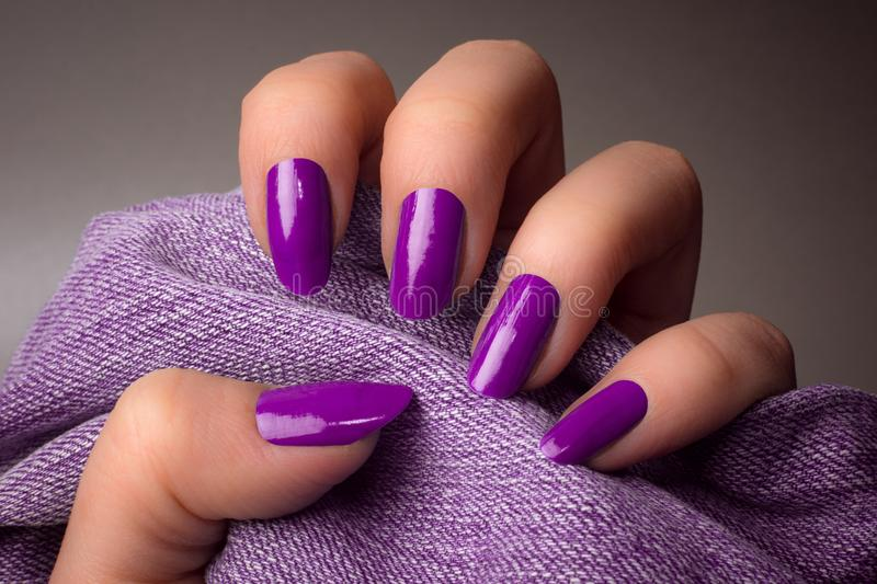 Purple nails manicure. The female hand with purple nails is holding purple denim textile on gray background. Manicure concept royalty free stock image