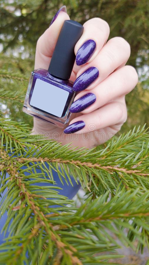 Female hand with purple violet long nails. And nail polish bottle royalty free stock photography