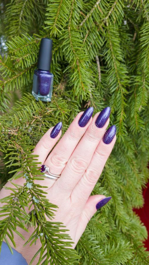Female hand with purple violet long nails. And nail polish bottle royalty free stock photos