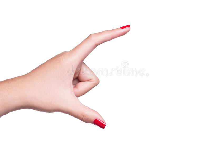 Female hand showing empty space as hand hold card stock photography