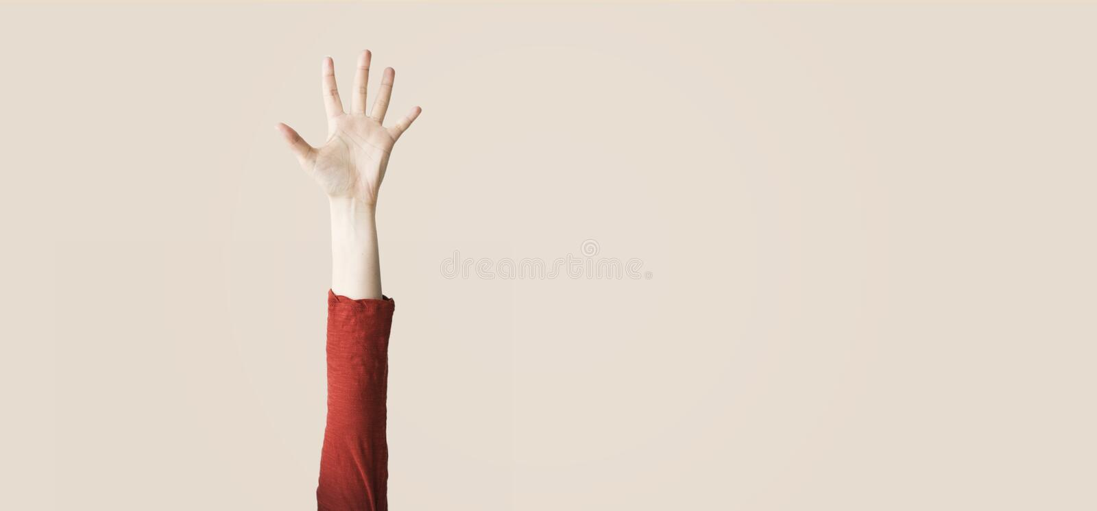 Female hand showing number five, isolated background stock images