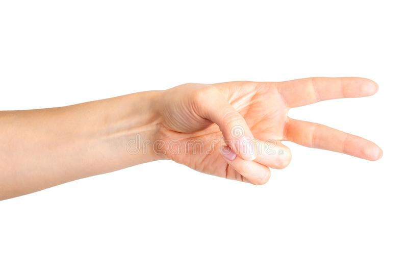 Female hand showing two fingers in the peace symbol or scissors. Female hand showing two fingers up in the peace, victory symbol or scissors. Isolated with royalty free stock image