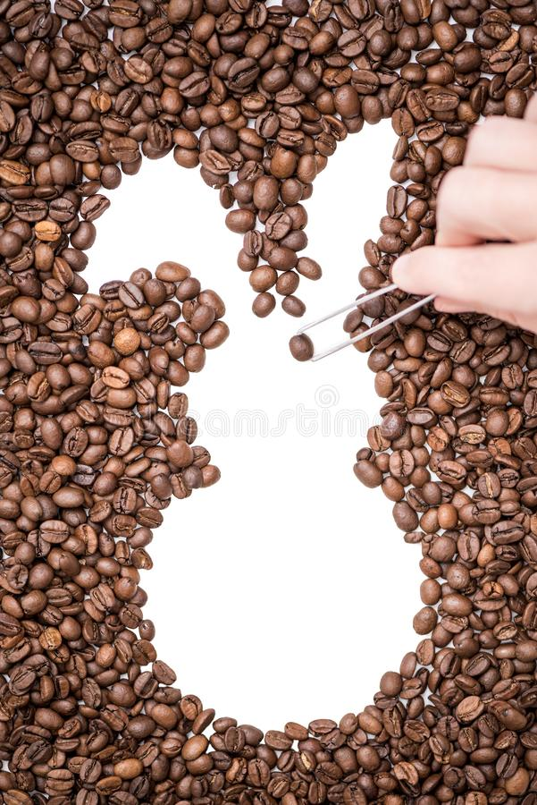 Female hand with tweezers laying out coffee beans and creates the shape of an Easter bunny. royalty free stock photo