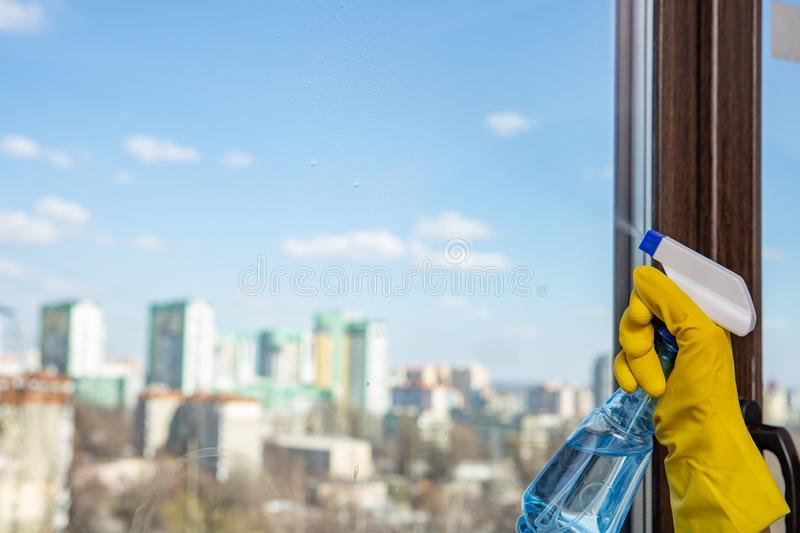 Female hand in yellow gloves cleaning window with spray detergent. Spring cleanup. Housework concept stock photos