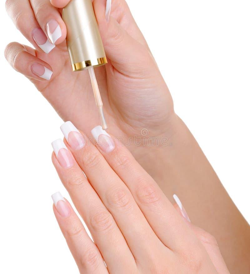 Female hands applying nail vanish on fingernail. Macro shot of female hands applying clear nail vanish on her fingernails royalty free stock photo