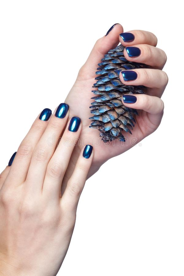 Female hands with blue Christmas fir-cone and shiny nails manicure isolated on white. Woman is holding blue Christmas fir-cone. Female fingers with shiny blue royalty free stock images