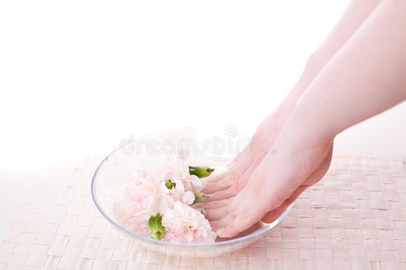 Female hands in bowl full of water royalty free stock images