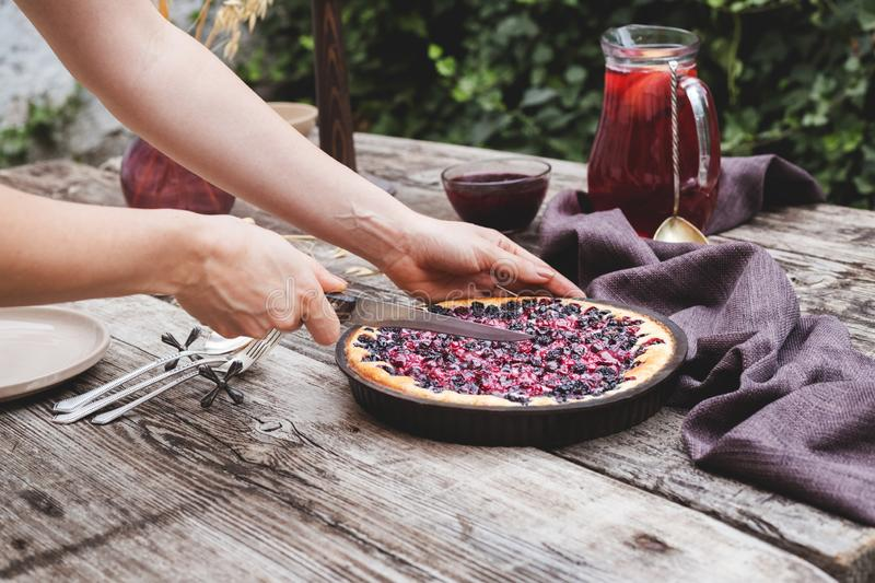 Female hands are cutting berry pie on wooden table in rustic style . Homemade cheesecake on the outdoor stock images