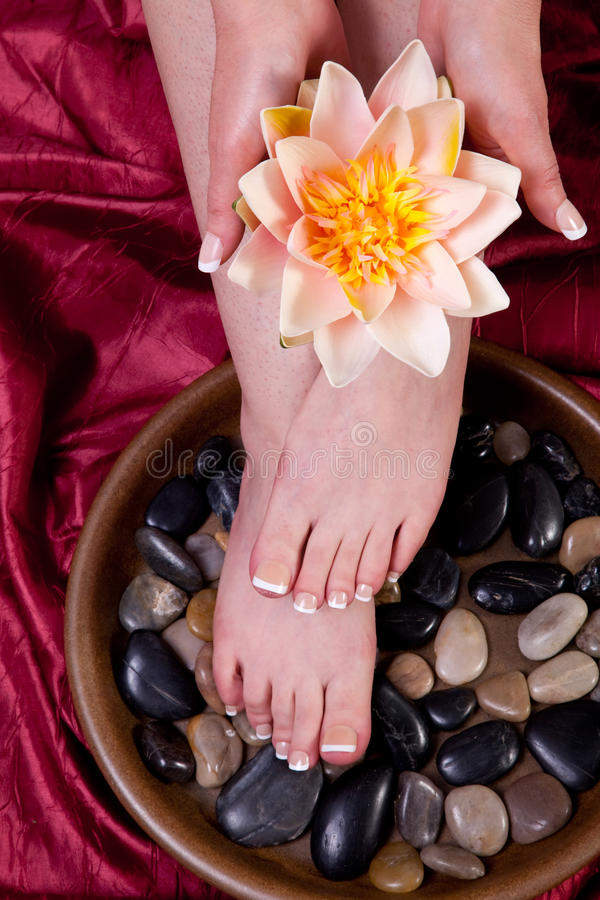 Female hands and feet. Hands and feet of a female being pampered stock image