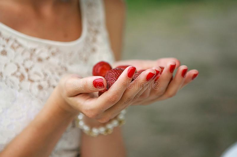 Female hands hold a handful of strawberries stock image