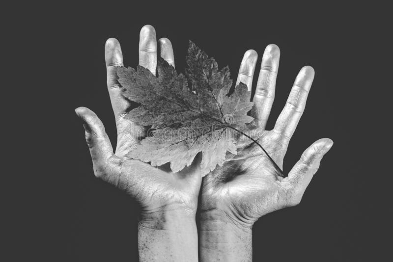Female hands holding an autumn leaf. Hello Autumn and leaf fall Dreams. Autumn leaves background. Black friday sales and stock image