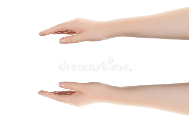 Female hands holding betweeh them isolated on white. Measure stock image