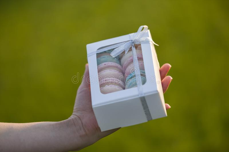 Female hands holding cardboard gift box with colorful pink blue handmade macaron cookies on green blurred copy space background stock image