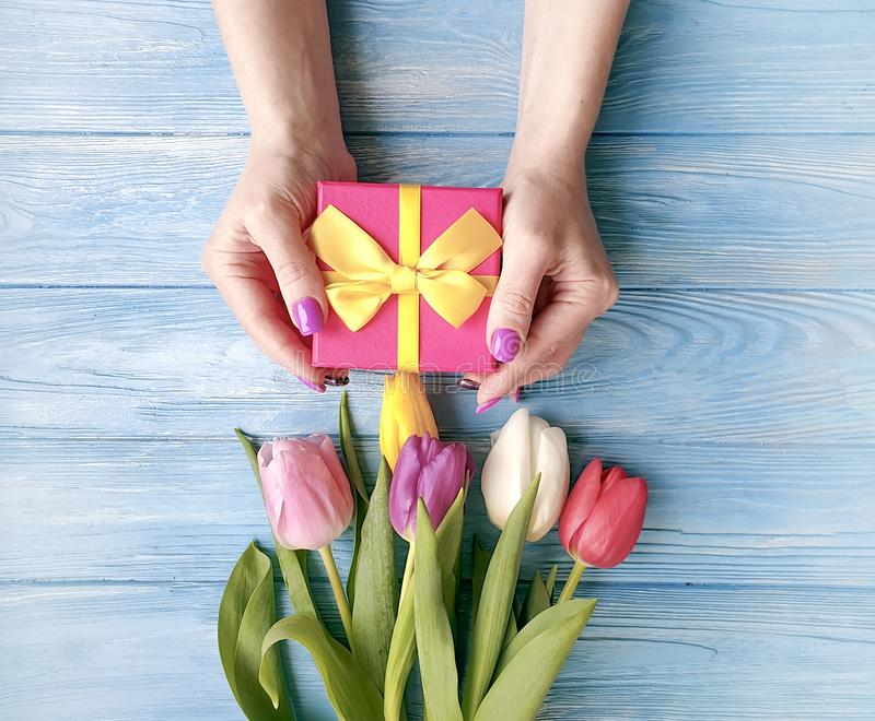 Female hands holding a gift box, anniversary spring celebration romance a bouquet of tulips on a blue wooden composition royalty free stock photography