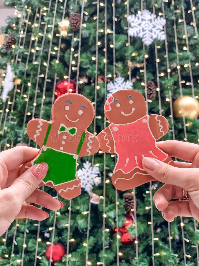Female hands holding a gingerbread man gingerbread cookie, against the background of the Christmas tree stock photography