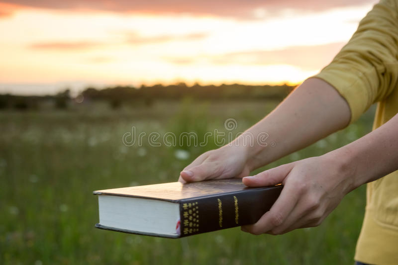 Female hands holding opened hardback book, diary with fanned pag. Es on blurred nature landscape background against sunset sky with back light. Copy space, back stock image