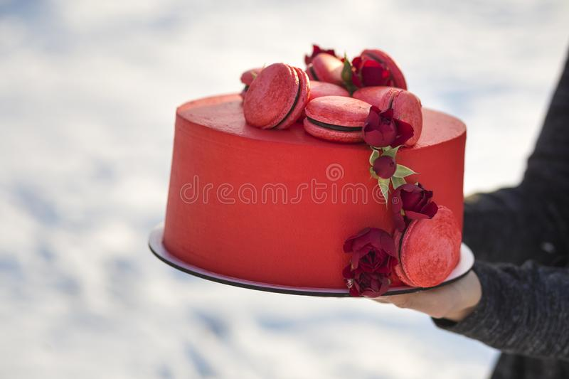 Female hands holding plate with fresh delicious yummy homemade red cake with macarons decorated with flowers on light blurred copy stock images