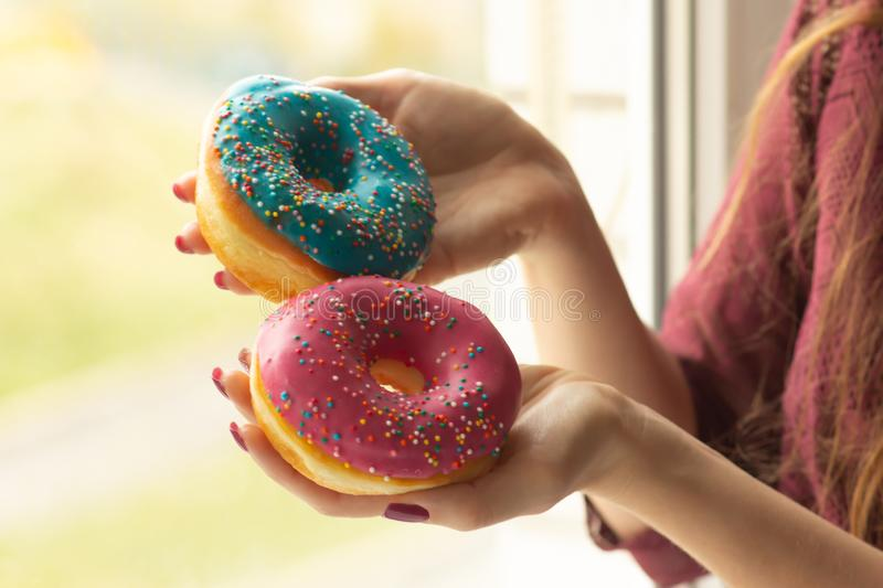 Female hands holding sweet donuts with sprinkles, close-up royalty free stock photography
