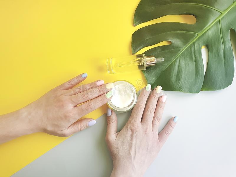 Female hands manicure, cosmetic hygiene essence creative cream summer , monstera leaf on a colored background royalty free stock photo