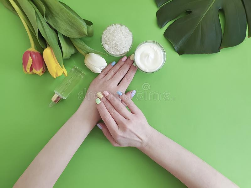 Female hands manicure beauty , spring cosmetic creative cream moisturizing , monstera tulip leaf on a background stock photos