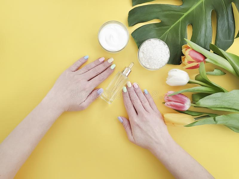 Female hands manicure, essence therapy cream cosmetic tulip on a colored background royalty free stock photo