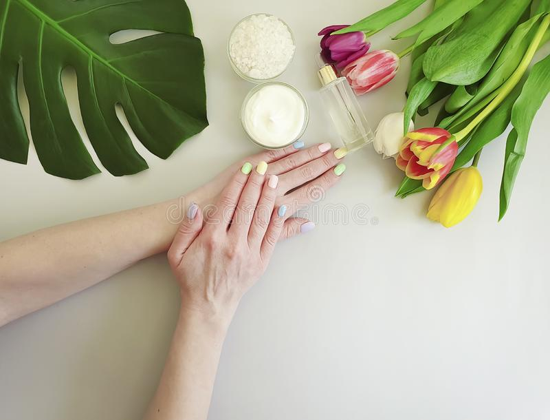 Female hands manicure, essence moisturizer therapy cream cosmetic tulip on a colored background stock photography