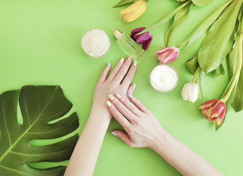 Female hands manicure, essence   cream cosmetic tulip on a colored background royalty free stock image