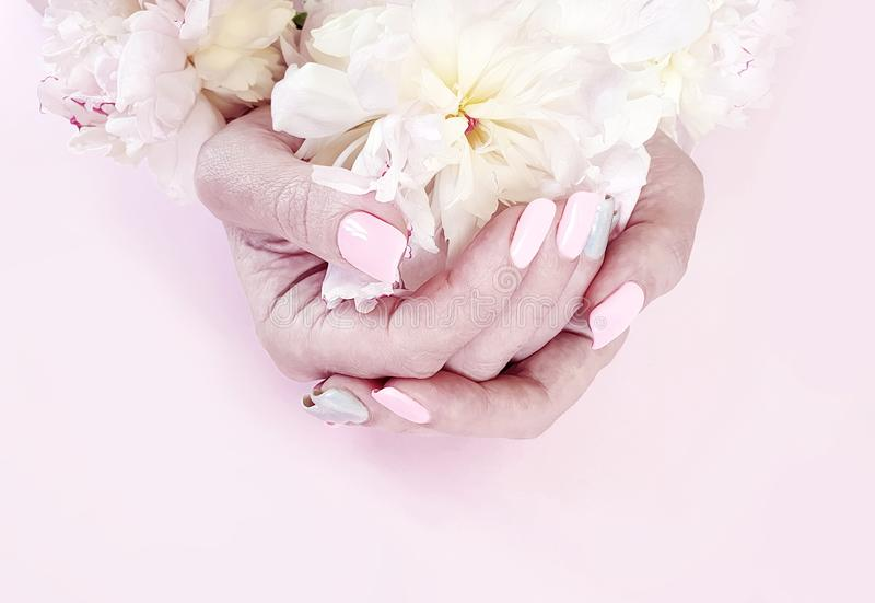 Female hands manicure flower peony on a pink background royalty free stock photography
