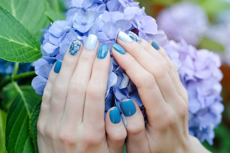 Female hands with a nice manicure on a blue flower royalty free stock images
