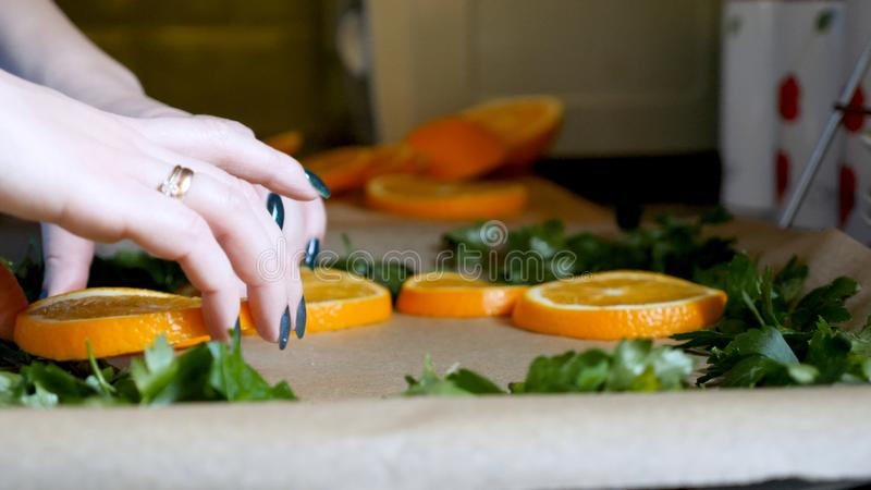 Female hands placing orange slices on baking tray tin in kitchen.  stock photo