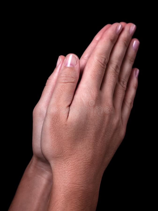 Female hands praying with palms together. Black background. stock photo