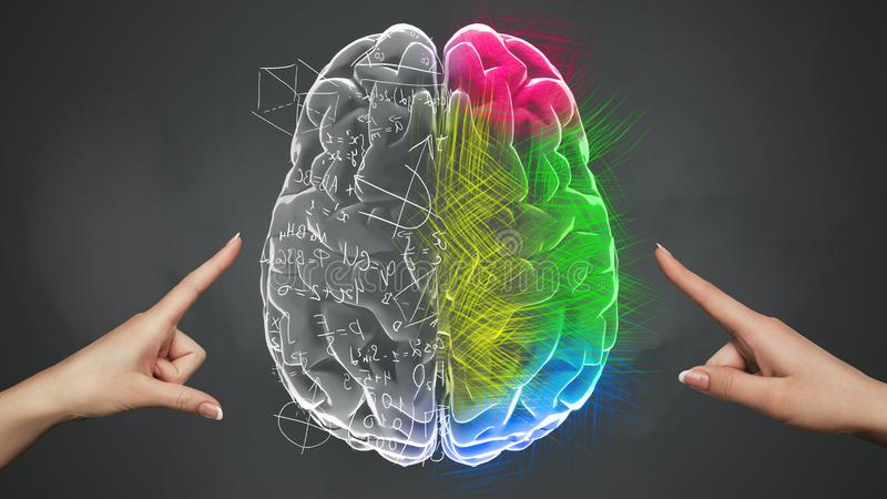 Female hands touching Analytical and Creative part of brain. Activate your mind orientation. Female hands touching Analytical and Creative part of brain, dark stock illustration