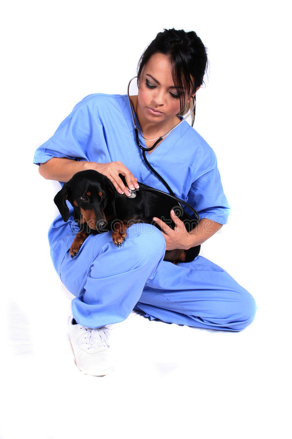 Female Healthcare Worker with Dog stock photo