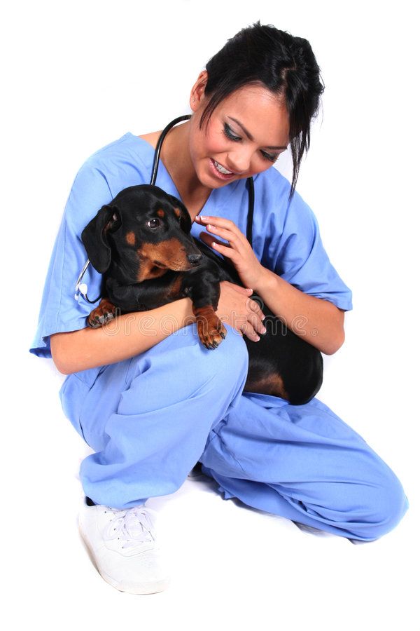 Free Female Healthcare Worker With Dog Stock Image - 1548981