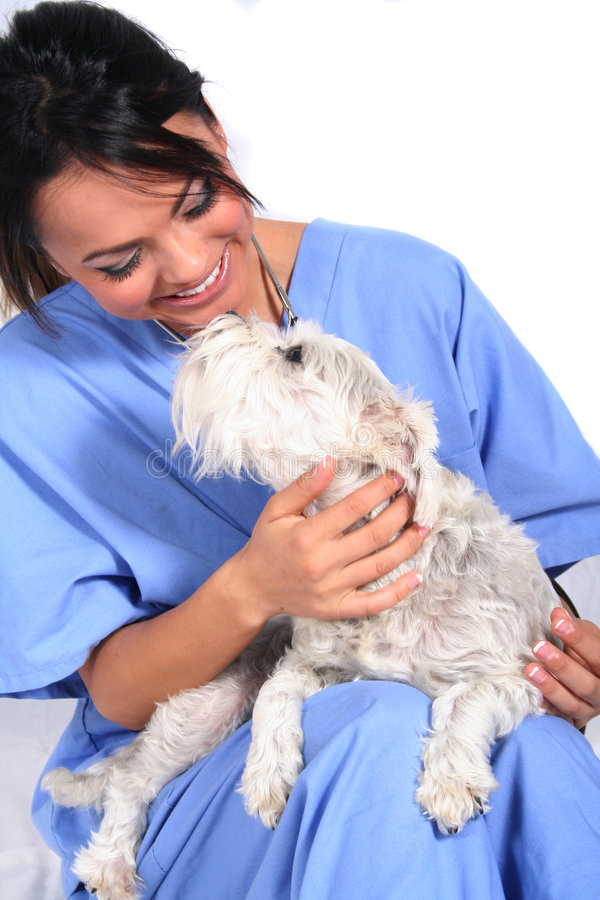 Free Female Healthcare Worker With Dog Stock Photo - 1549030