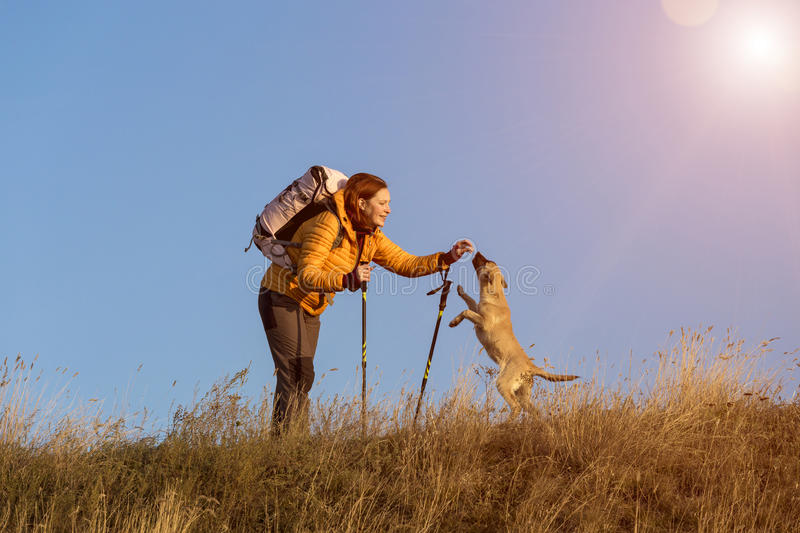 Female hiker and dog on pathway. Smiling woman playing with her dog on clay trail yellow green grass lawn sunshine back light blue sky background stock image